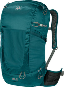 Jack Wolfskin Kingston 30 Rucksack black | campz.at